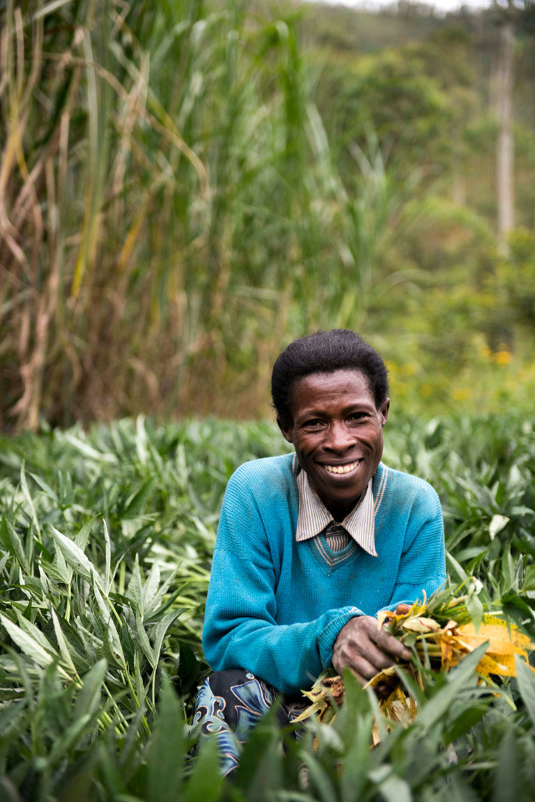 OFSP gives Rwandan farmers and their families a reason to smile