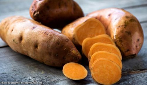 Millions at lower risk of Vitamin A deficiency by eating sweet potato
