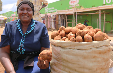 Better quality potatoes for Uganda