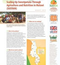Scaling Up Sweetpotato Through Agriculture and Nutrition in Malawi (SUSTAIN)
