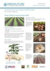 Most important potato diseases and pests: Feed the Future Kenya Accelerated Value Chain Development Program—Root crops component