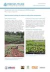 Apical rooted cuttings to enhance seed potato production: Feed the Future Kenya Accelerated Value Chain Development Program—Root crops component