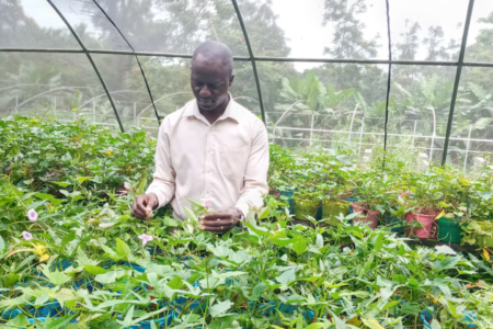 Q&A with Bernard Yada: Empowering National Agricultural Research Systems