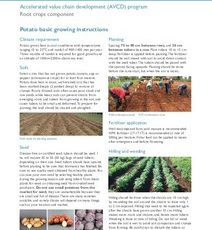 Potato basic growing instructions: Feed the Future Kenya Accelerated Value Chain Development Program—Root crops component