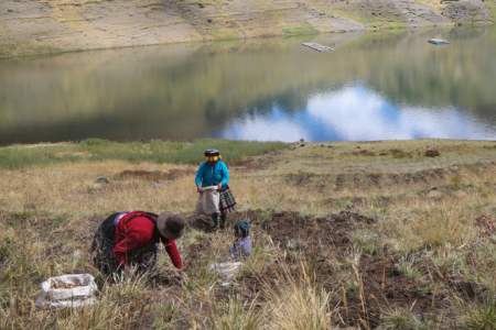 Women hold the seeds of a stronger food system for Peru